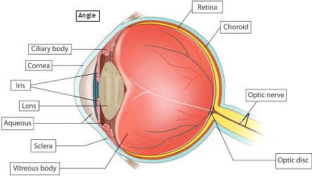 Глаукома 3 степени что делать